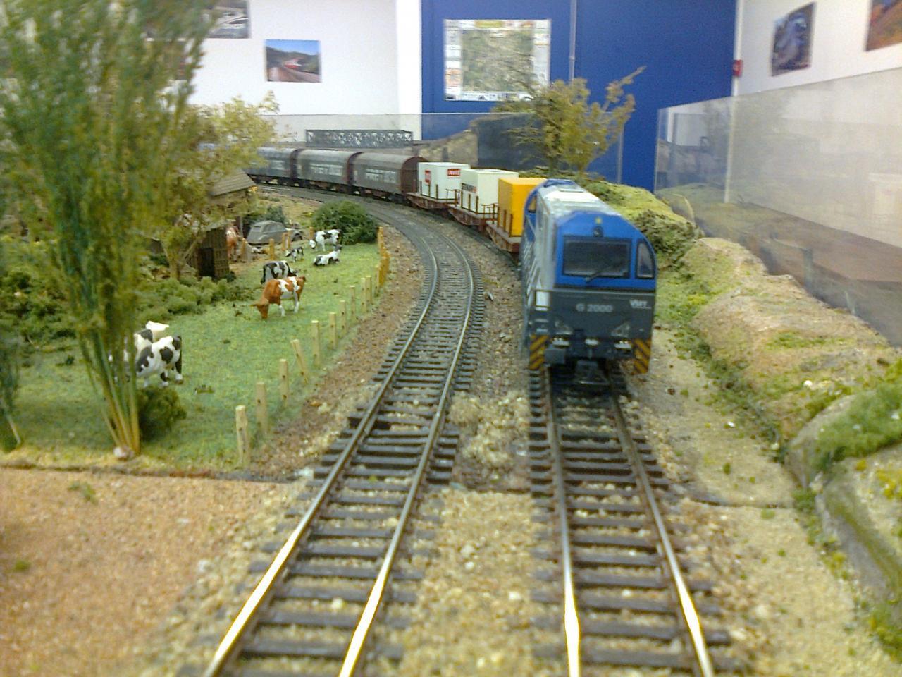 G2000 + train de fret